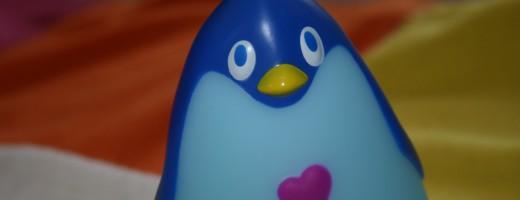 Pingouin photo